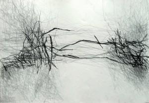 Bianca-Santini,-sem-título,-grafite-sobre-papel1-40x59cm,-2015